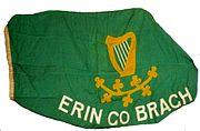 180px-Erin_Go_Bragh_flag.jpg