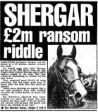 Image result for shergar